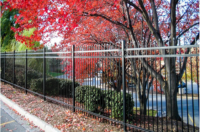 Beautiful Fences
